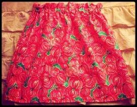 Punkin Chunkin Skirt-
