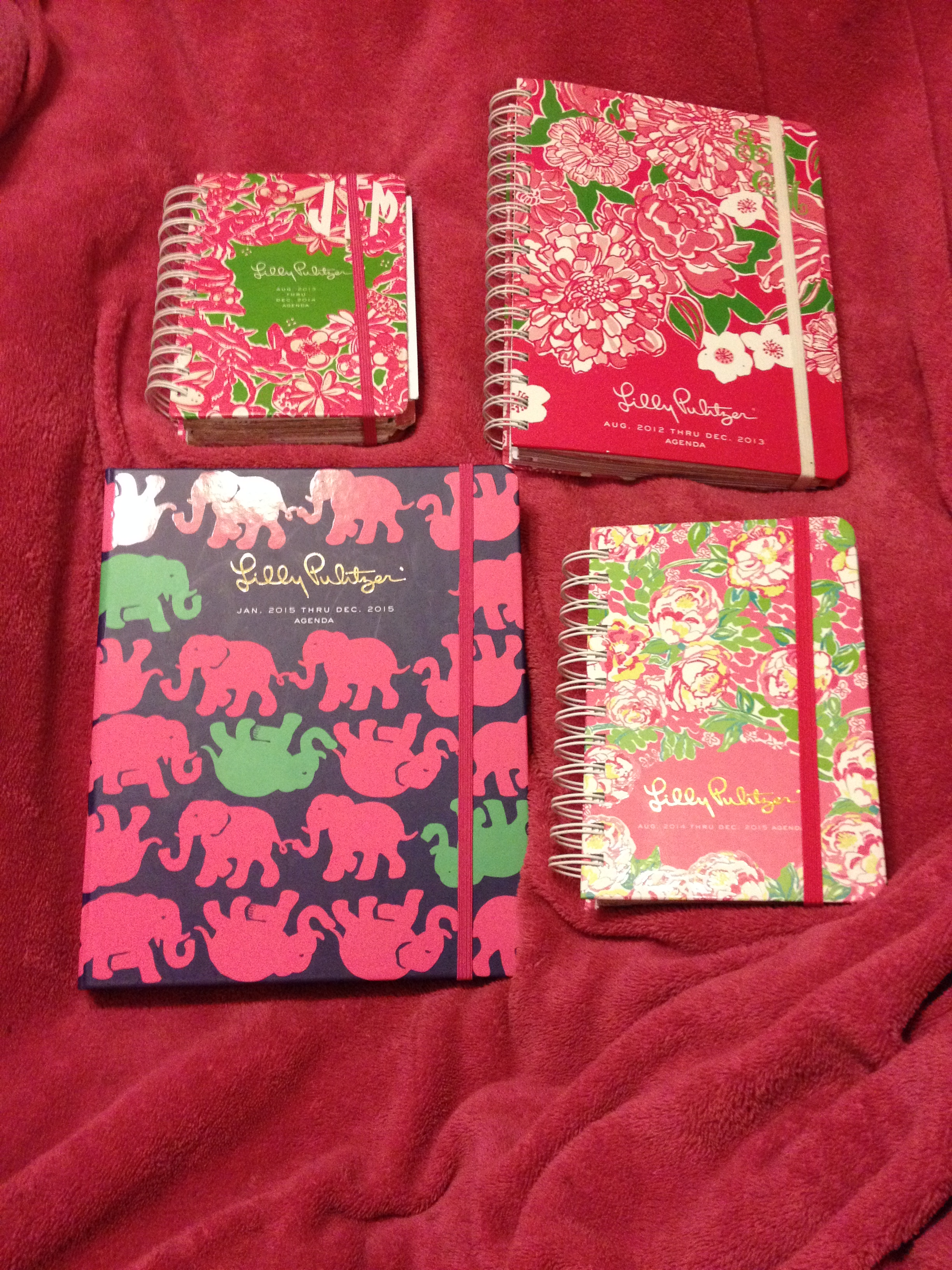 How My Lilly Pulitzer Planner Saved My Life